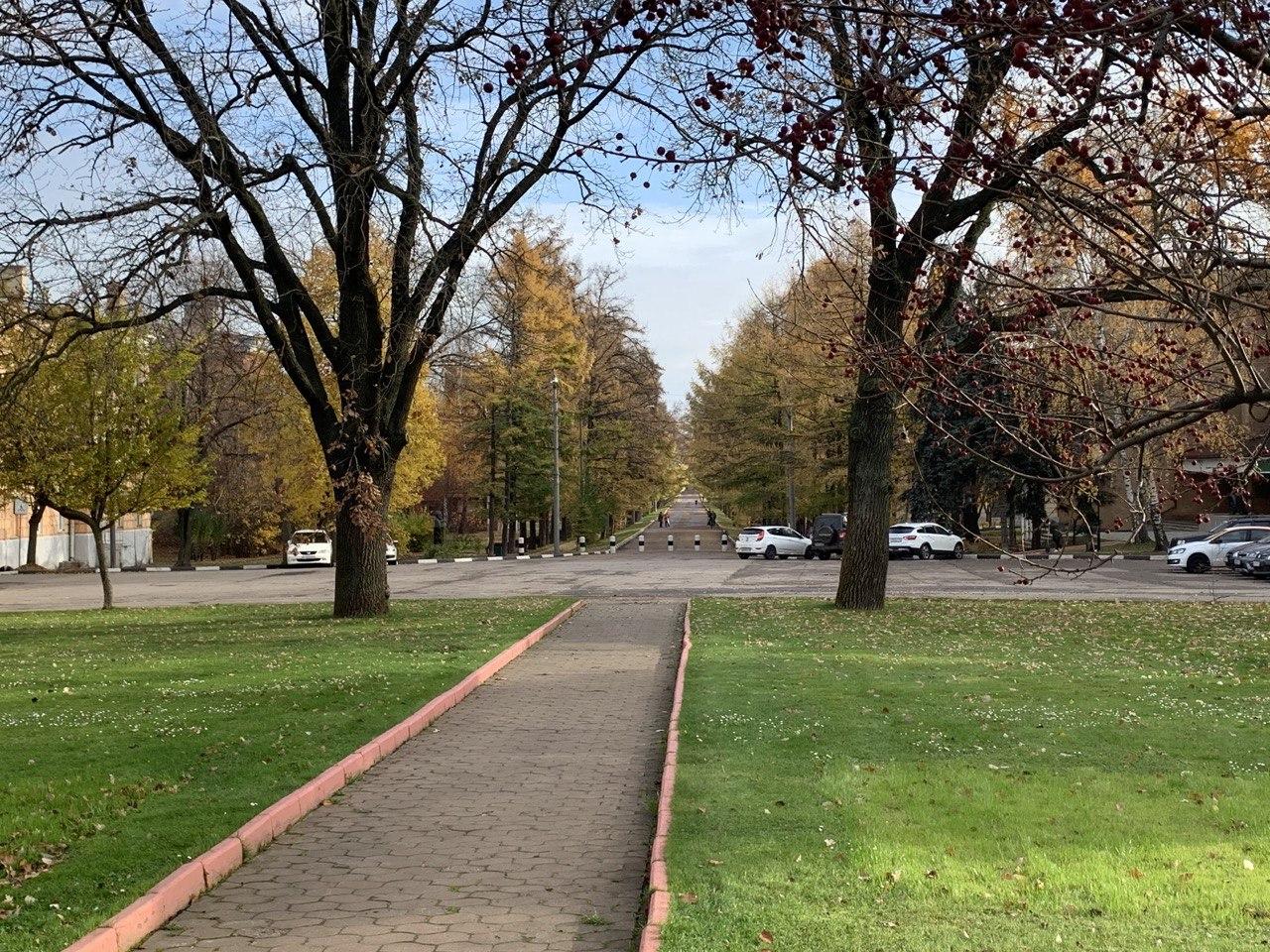 Как ведутся работы по благоустройству Городского парка Ивантеевки